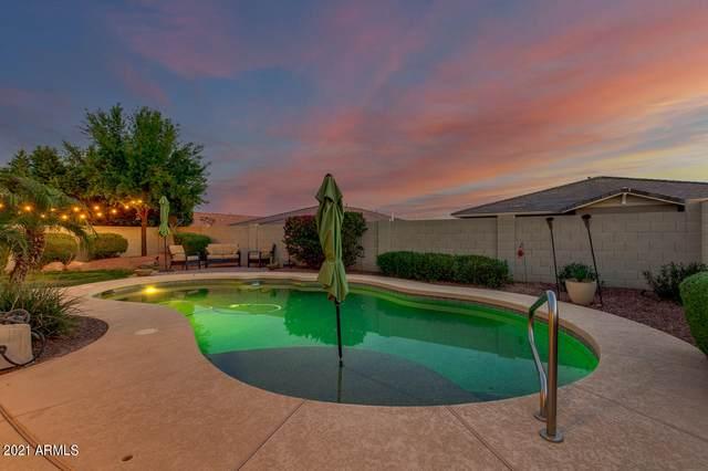 20401 W Terrace Lane, Buckeye, AZ 85396 (MLS #6214683) :: Howe Realty