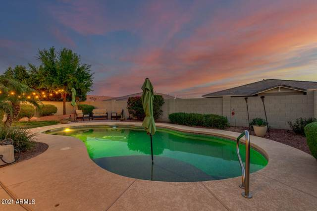 20401 W Terrace Lane, Buckeye, AZ 85396 (MLS #6214683) :: Yost Realty Group at RE/MAX Casa Grande