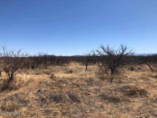 00 E Busenbark Road, Willcox, AZ 85643 (MLS #6214721) :: Kepple Real Estate Group