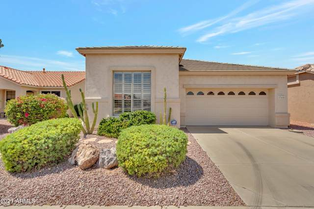17034 N Javelina Drive, Surprise, AZ 85374 (MLS #6214747) :: Arizona 1 Real Estate Team