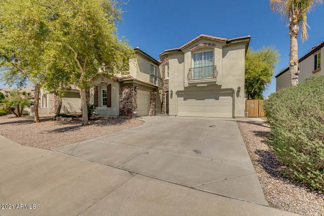 884 E Mead Drive, Chandler, AZ 85249 (MLS #6214811) :: Yost Realty Group at RE/MAX Casa Grande