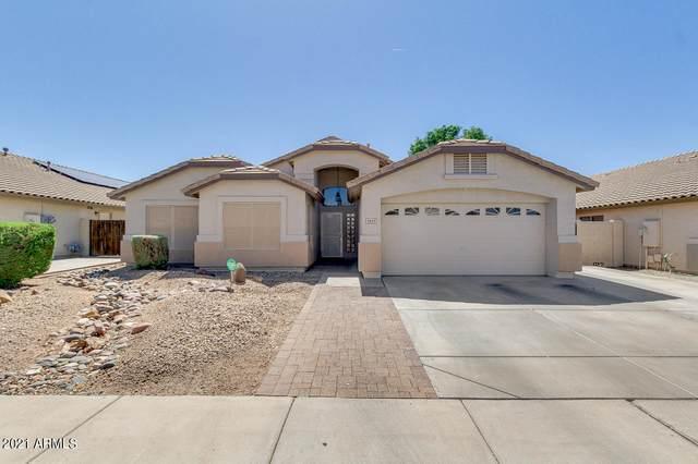 3433 W Patrick Lane, Phoenix, AZ 85027 (MLS #6214835) :: Yost Realty Group at RE/MAX Casa Grande