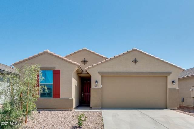 9093 N 98TH Avenue, Peoria, AZ 85345 (MLS #6214853) :: Yost Realty Group at RE/MAX Casa Grande