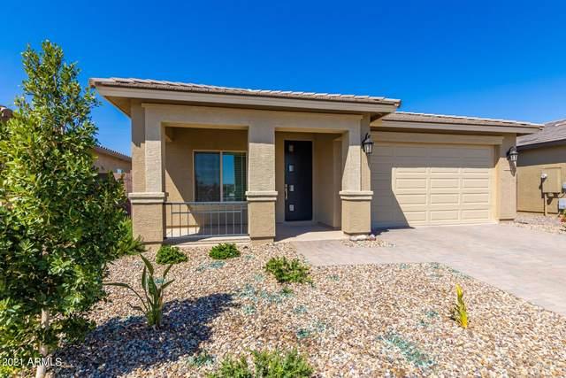42088 N Hinoki Street, San Tan Valley, AZ 85140 (MLS #6214860) :: Yost Realty Group at RE/MAX Casa Grande