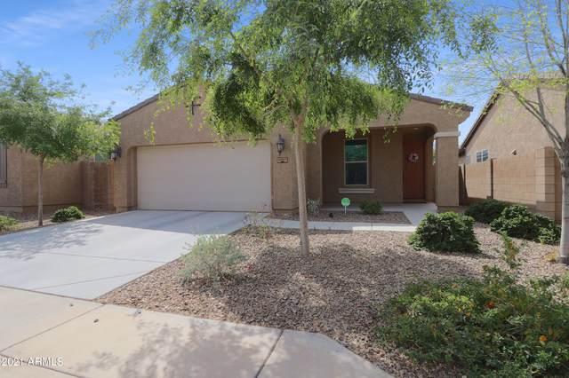 10321 W Hughes Drive, Tolleson, AZ 85353 (MLS #6214935) :: Hurtado Homes Group