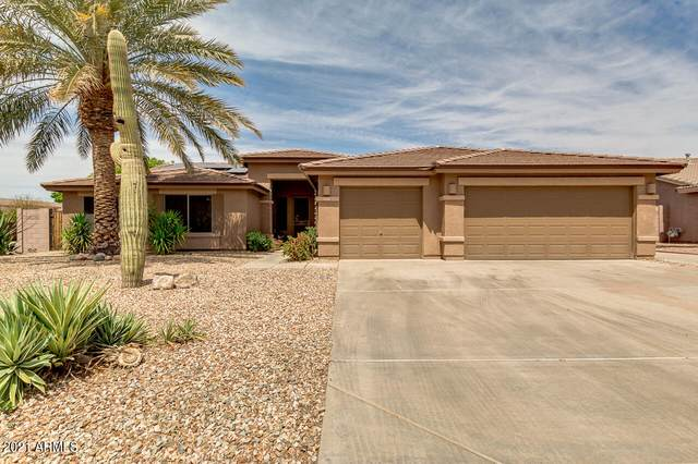 8838 W Potter Drive, Peoria, AZ 85382 (MLS #6214939) :: My Home Group