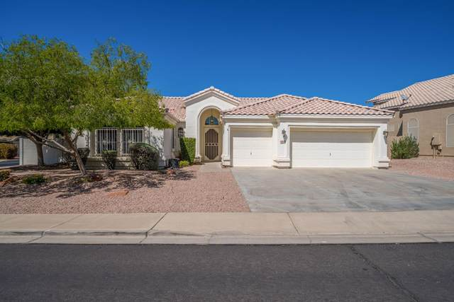 6522 E Regina Street, Mesa, AZ 85215 (MLS #6214950) :: The Property Partners at eXp Realty