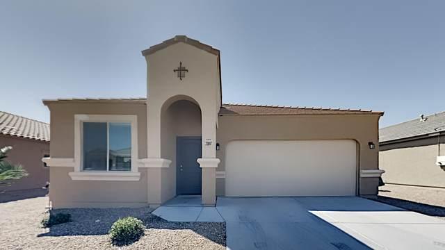 23817 W Tamarisk Avenue, Buckeye, AZ 85326 (MLS #6215065) :: Yost Realty Group at RE/MAX Casa Grande