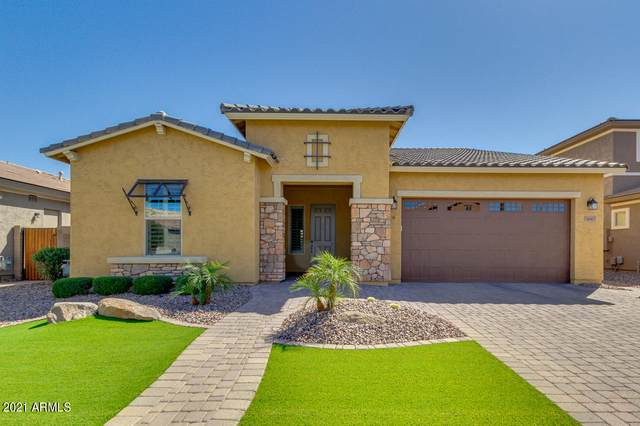 3667 E Jude Lane, Gilbert, AZ 85298 (MLS #6215094) :: Yost Realty Group at RE/MAX Casa Grande