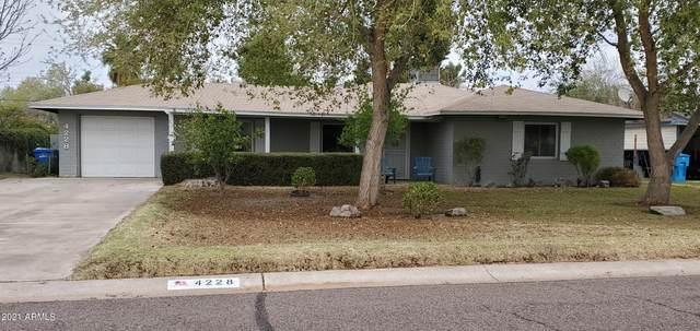 4228 E Vernon Avenue, Phoenix, AZ 85008 (MLS #6215105) :: Yost Realty Group at RE/MAX Casa Grande