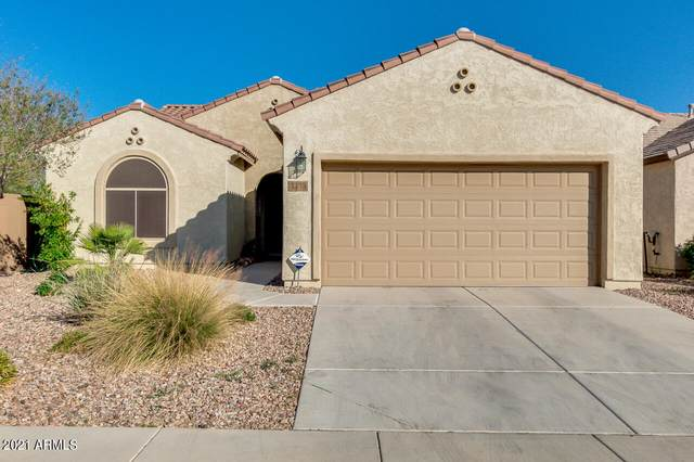 3453 N San Marin Drive, Florence, AZ 85132 (#6215117) :: AZ Power Team
