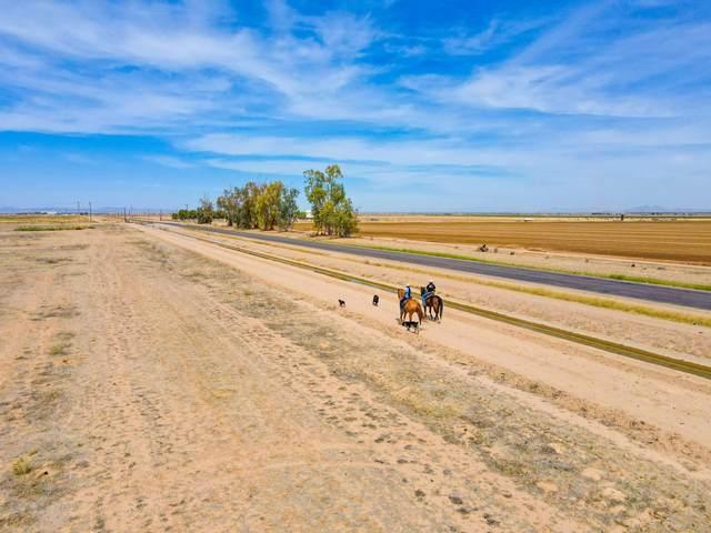 9526 N Ranchette Way, Maricopa, AZ 85139 (MLS #6215163) :: Yost Realty Group at RE/MAX Casa Grande