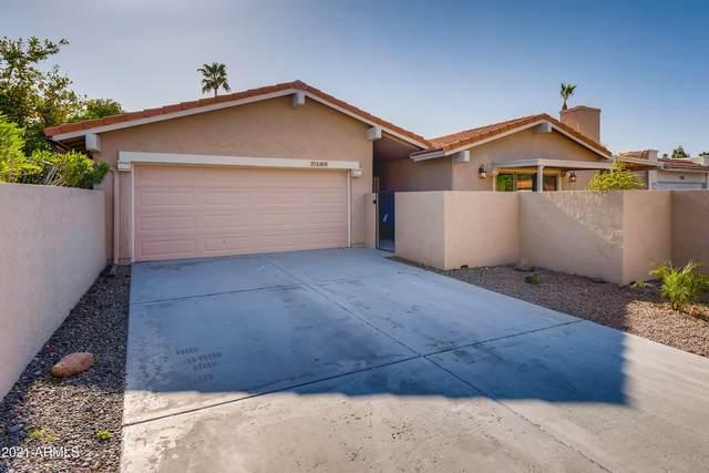 7135 N Via De Amigos, Scottsdale, AZ 85258 (MLS #6215280) :: Yost Realty Group at RE/MAX Casa Grande