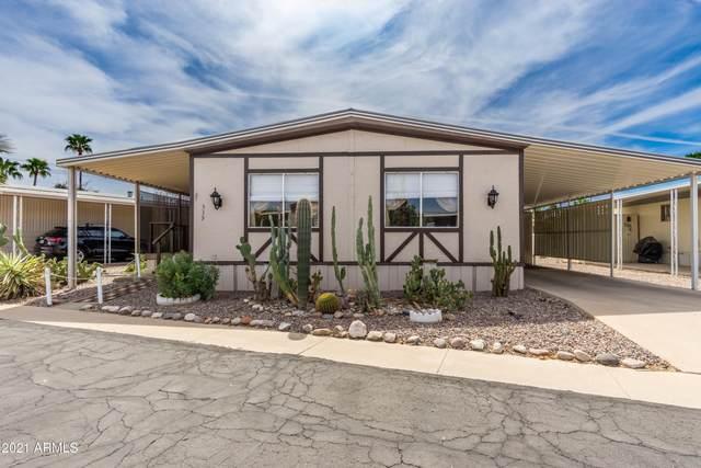 305 S Val Vista Drive #339, Mesa, AZ 85204 (#6215292) :: AZ Power Team