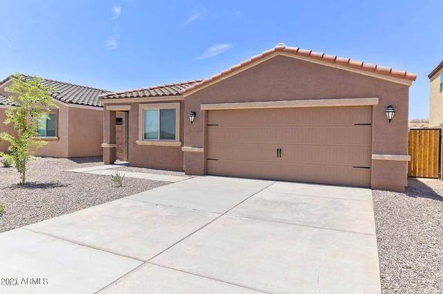 13174 E Aster Lane, Florence, AZ 85132 (MLS #6215315) :: Yost Realty Group at RE/MAX Casa Grande