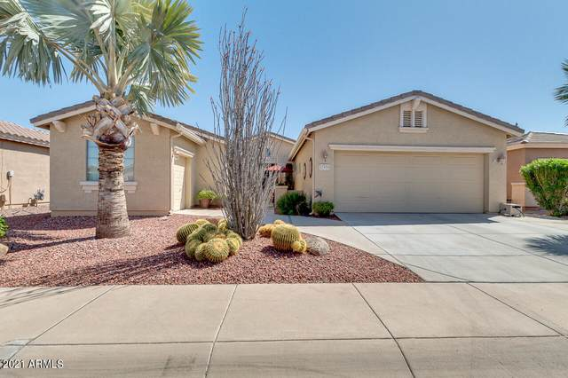 42959 W Morning Dove Lane, Maricopa, AZ 85138 (MLS #6215346) :: Yost Realty Group at RE/MAX Casa Grande