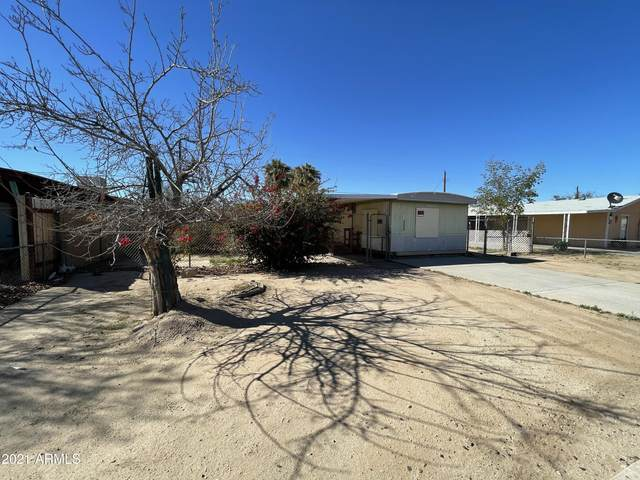 6444 S 24TH Street, Phoenix, AZ 85042 (MLS #6215372) :: neXGen Real Estate
