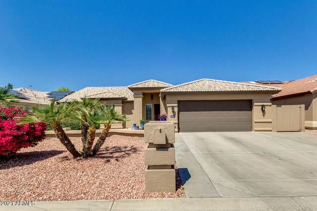 15744 W Vale Drive, Goodyear, AZ 85395 (MLS #6215377) :: Devor Real Estate Associates