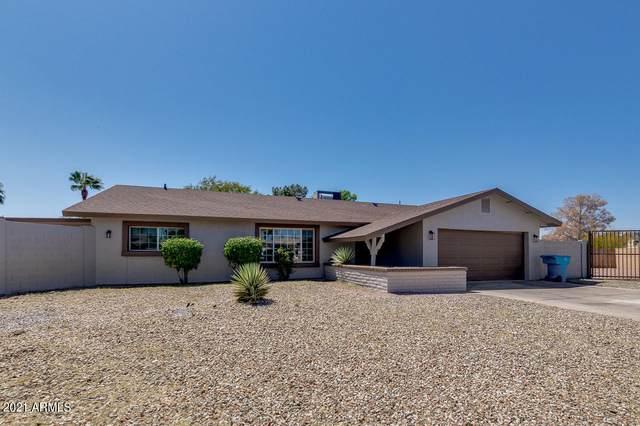 3133 W Gelding Drive, Phoenix, AZ 85053 (MLS #6215379) :: Yost Realty Group at RE/MAX Casa Grande