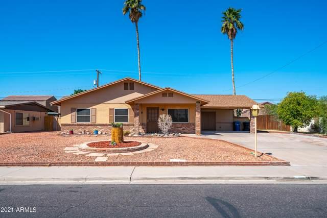 1624 N Markdale, Mesa, AZ 85201 (MLS #6215435) :: Yost Realty Group at RE/MAX Casa Grande