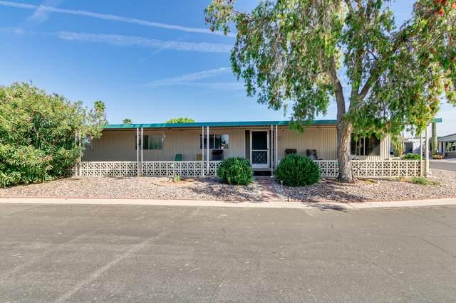 3160 E Main Street #31, Mesa, AZ 85213 (MLS #6215489) :: Yost Realty Group at RE/MAX Casa Grande