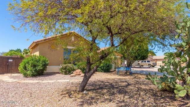 15706 N 162ND Court, Surprise, AZ 85374 (MLS #6215513) :: Yost Realty Group at RE/MAX Casa Grande