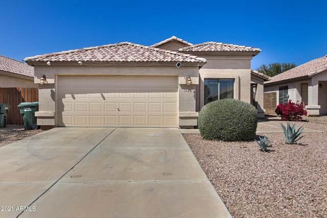3126 W Louise Drive, Phoenix, AZ 85027 (MLS #6215557) :: Yost Realty Group at RE/MAX Casa Grande