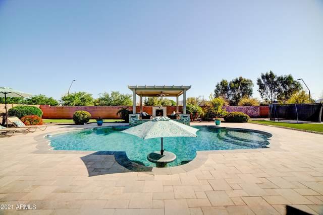 21343 E Misty Lane, Queen Creek, AZ 85142 (MLS #6215565) :: Yost Realty Group at RE/MAX Casa Grande