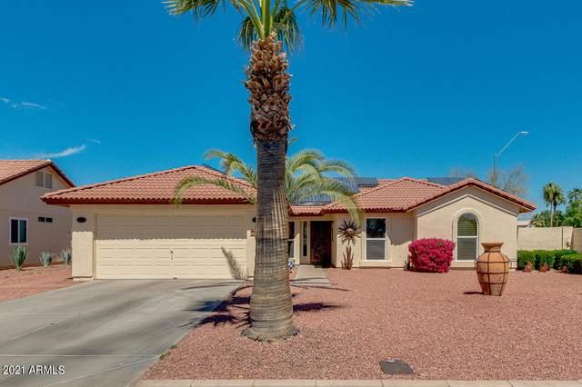 9102 W Maui Lane, Peoria, AZ 85381 (MLS #6215584) :: Yost Realty Group at RE/MAX Casa Grande