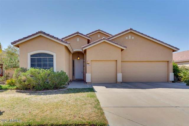 22488 N Mulligan Drive, Maricopa, AZ 85138 (MLS #6215599) :: Executive Realty Advisors