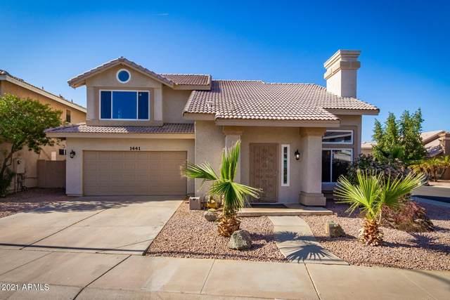 1441 E Gail Drive, Chandler, AZ 85225 (MLS #6215629) :: Yost Realty Group at RE/MAX Casa Grande
