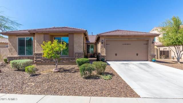 25662 N 103RD Drive, Peoria, AZ 85383 (MLS #6215660) :: Yost Realty Group at RE/MAX Casa Grande