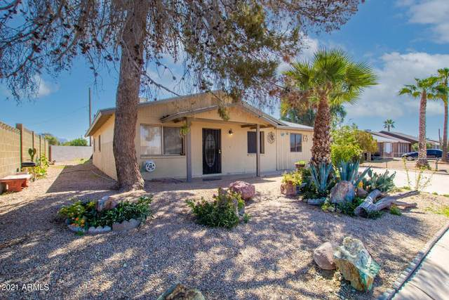 1731 S Buena Vista Drive, Apache Junction, AZ 85120 (MLS #6215675) :: Devor Real Estate Associates