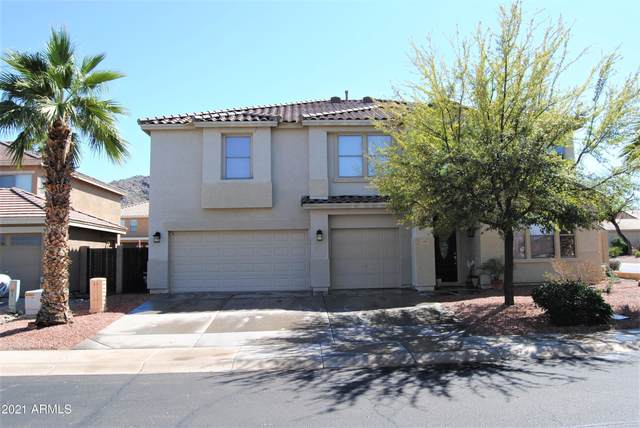 1201 E Beth Drive, Phoenix, AZ 85042 (MLS #6215676) :: Yost Realty Group at RE/MAX Casa Grande