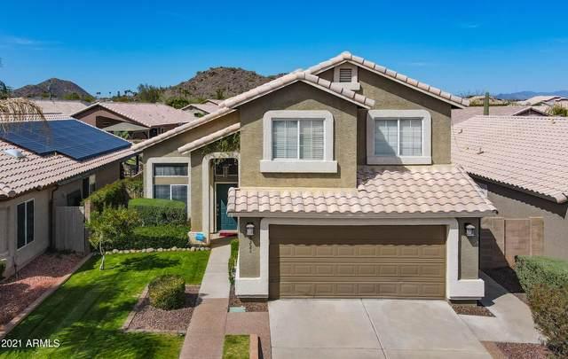 2224 E Morrow Drive, Phoenix, AZ 85024 (MLS #6215707) :: Yost Realty Group at RE/MAX Casa Grande