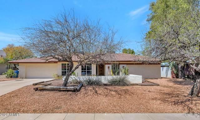 9218 N 33RD Way, Phoenix, AZ 85028 (MLS #6215714) :: Yost Realty Group at RE/MAX Casa Grande