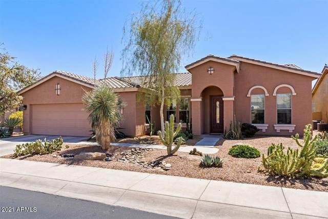 42197 W Baccarat Drive, Maricopa, AZ 85138 (MLS #6215718) :: Arizona Home Group