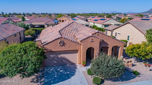 7229 W Autumn Vista Way, Florence, AZ 85132 (MLS #6215765) :: The Property Partners at eXp Realty