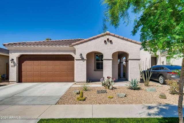 2840 E Sunland Avenue, Phoenix, AZ 85040 (MLS #6215772) :: Yost Realty Group at RE/MAX Casa Grande