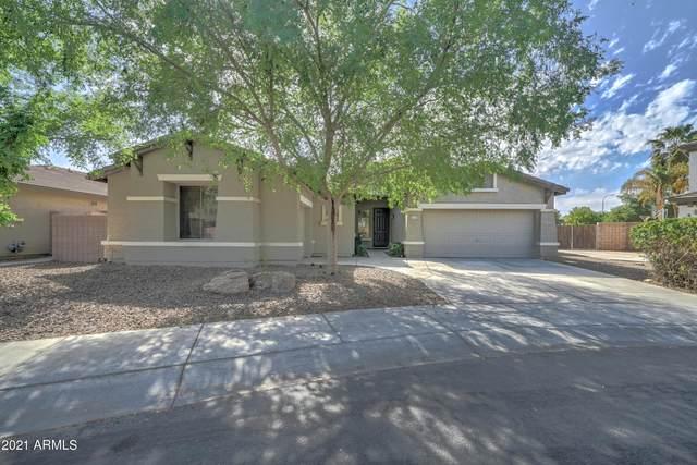 2140 S Holguin Way, Chandler, AZ 85286 (MLS #6215834) :: The Property Partners at eXp Realty