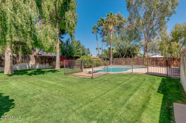 2628 E Yucca Street, Phoenix, AZ 85028 (MLS #6215840) :: Yost Realty Group at RE/MAX Casa Grande