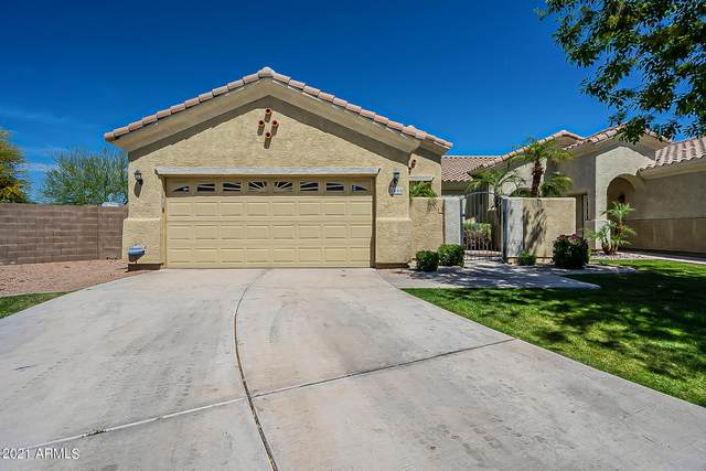 8466 E Pampa Avenue, Mesa, AZ 85212 (MLS #6215859) :: The Dobbins Team