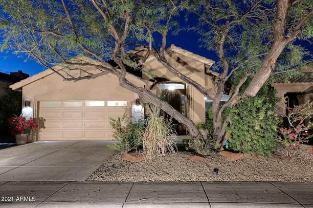 2146 E Electra Lane, Phoenix, AZ 85024 (MLS #6215880) :: The Luna Team