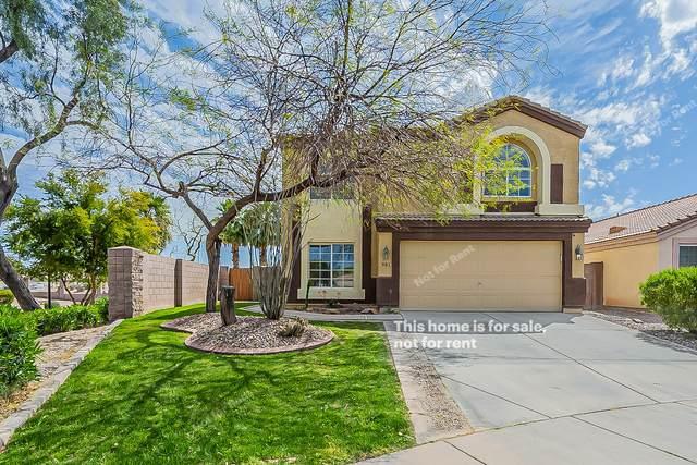 981 E Laredo Street, Chandler, AZ 85225 (MLS #6215899) :: My Home Group