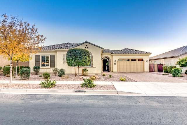 22299 E Rosa Road, Queen Creek, AZ 85142 (MLS #6215920) :: Yost Realty Group at RE/MAX Casa Grande