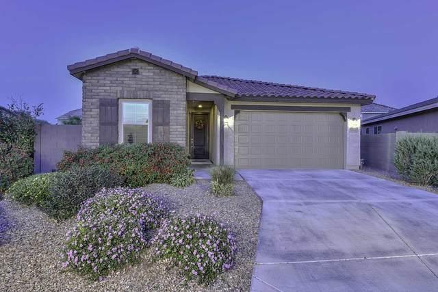 26229 N 121st Avenue, Peoria, AZ 85383 (MLS #6215982) :: Executive Realty Advisors
