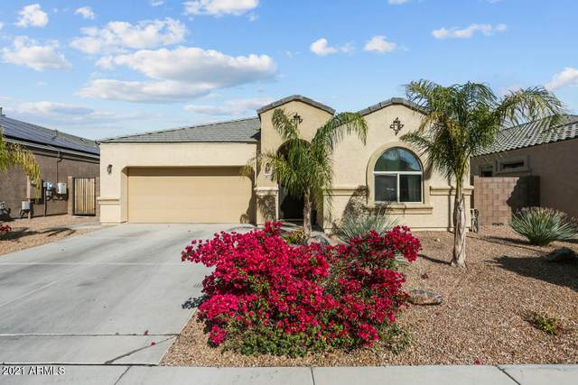 14777 N 171ST Drive, Surprise, AZ 85388 (MLS #6216013) :: Yost Realty Group at RE/MAX Casa Grande