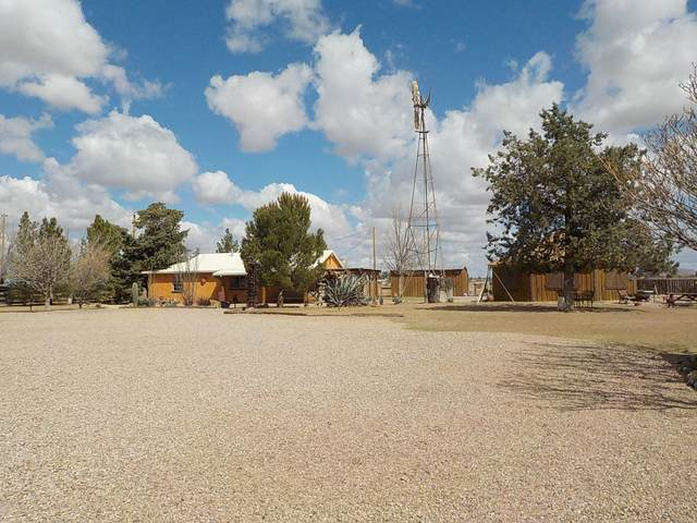 10023 N Bell Road, Elfrida, AZ 85610 (MLS #6216018) :: Conway Real Estate