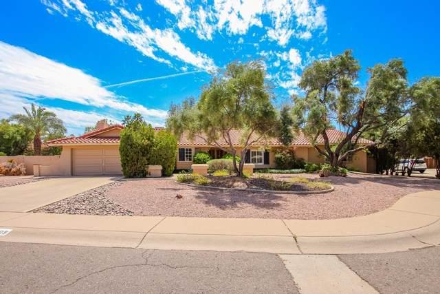 7409 E Larkspur Drive, Scottsdale, AZ 85260 (MLS #6216041) :: Yost Realty Group at RE/MAX Casa Grande