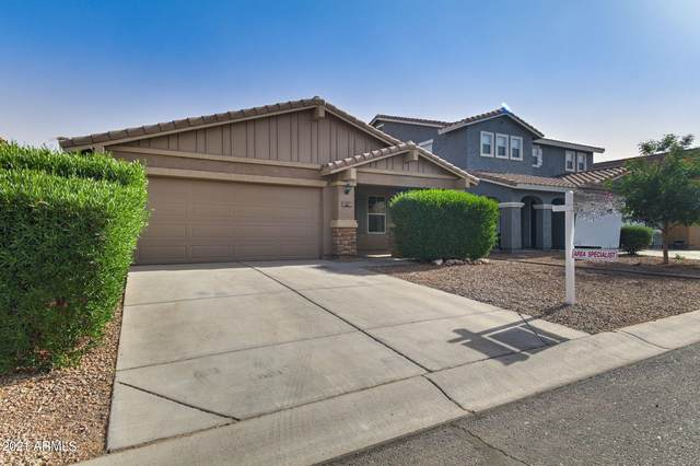 1387 E Desert Holly Drive, San Tan Valley, AZ 85143 (MLS #6216080) :: The Helping Hands Team